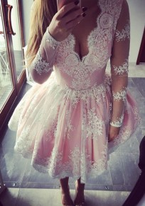 Pink Floral Embroidery Lace Grenadine Plunging Neckline Homecoming Cute Tutu Mini Dress