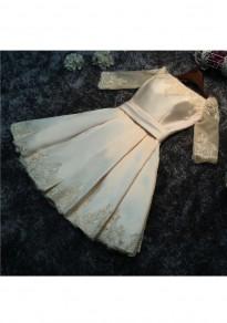 Champagne Patchwork Pleated Lace Zipper Fashion Mini Dress
