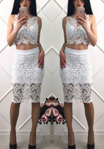 White Patchwork Hollow-out Lace 2-in-1 Double-deck Crop Zipper Midi Dress