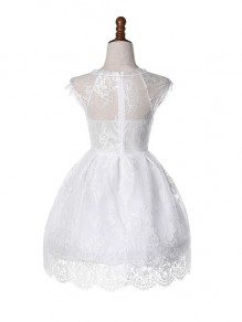 White Lace Tulle Tutu Pleated Homecoming Elegant Prom Party Mini Dress