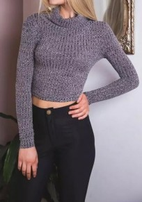 Dark Grey Plain Crop High Neck Streetwear Cotton Pullover Sweater
