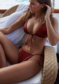 Wine Red Bow Condole Belt 2-in-1 V-neck Fashion Swimwear