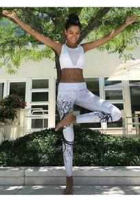 Hellblaues Gürtel Trainings-hoch tailliertes Sport-Yoga-Trainings-langes Legging