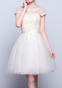 Champagne Plain Lace Grenadine Round Neck Sleeveless Sweet Mini Dress